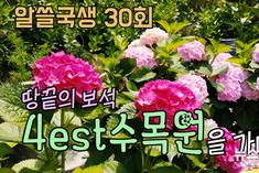 """""""한국의 수목원 식물원"""" 어디까지 가봤니?"""