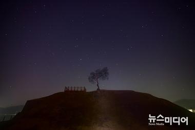 [포토줌인] 솔(松)과 별 #2